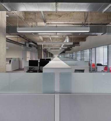EDGE EX6 Direct/Indirect Open Office Space